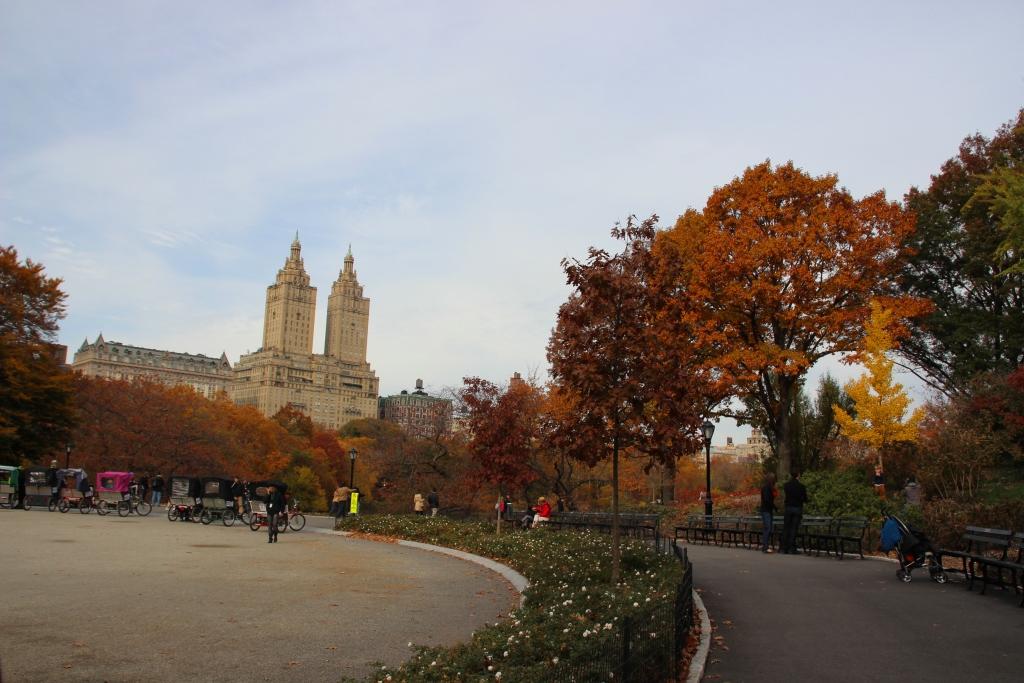 Passeio no Central Park