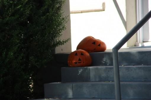 Abóboras na calçada