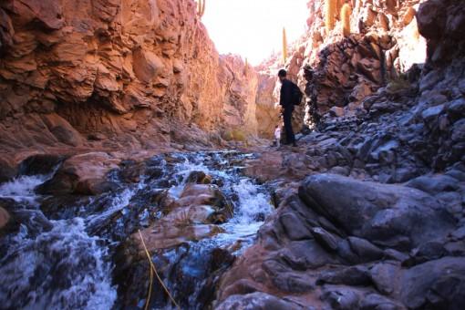 Um pouco de água no deserto