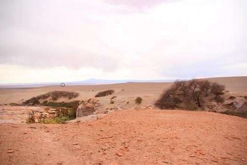 Guia caminhando nas dunas pra chamar ajuda