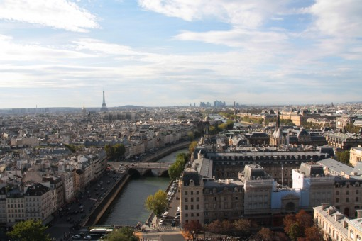 de cima da torre da Notre Dame