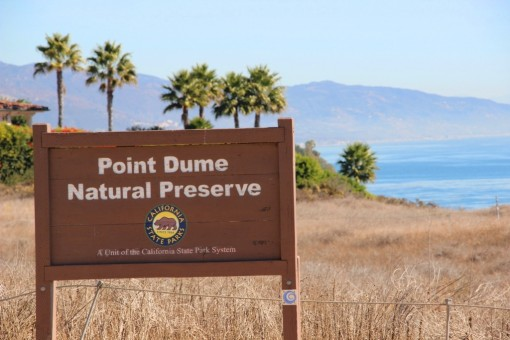 Point Dume (3)