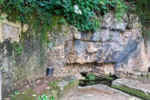 Quinta da Lágrimas