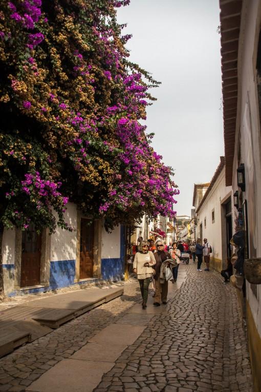 Momento em que a rua principal não estava tão abarrotada de gente e o personagem principal foi essa árvore florida