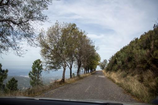 Foquei tanto a atenção no caminho que esqueci até das fotos. Aqui tava muito fácil de dirigir ainda.