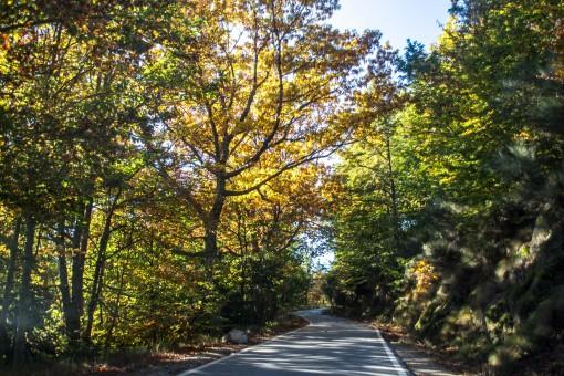 Caminho de sonho na Serra da Estrela