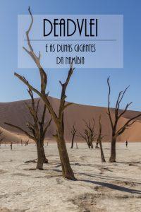 Cemitério de Acácias no deserto da Namíbia