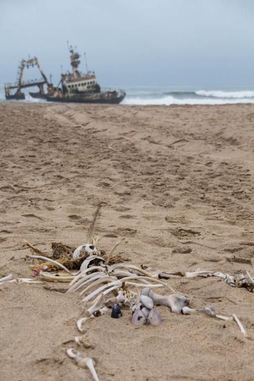 Ossos de foca em formato humano. Arte dos nossos amigos namibianos.