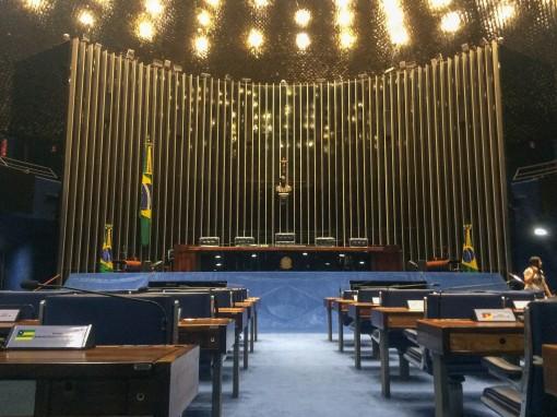Repara a Bandeira Nacional no carpete do Senado. Criação do servente Clodoaldo.