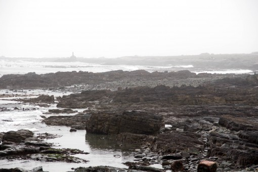 Robben Island coberta por neblina.