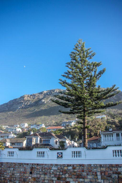 Não lembro o nome dessa cidadezinha, mas fica no caminho para o Cabo da Boa Esperança. É um charme!