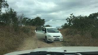 Carro branco encalhado no Kruger