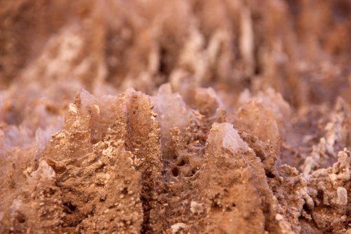 Sal já cristalizado brotando da rocha