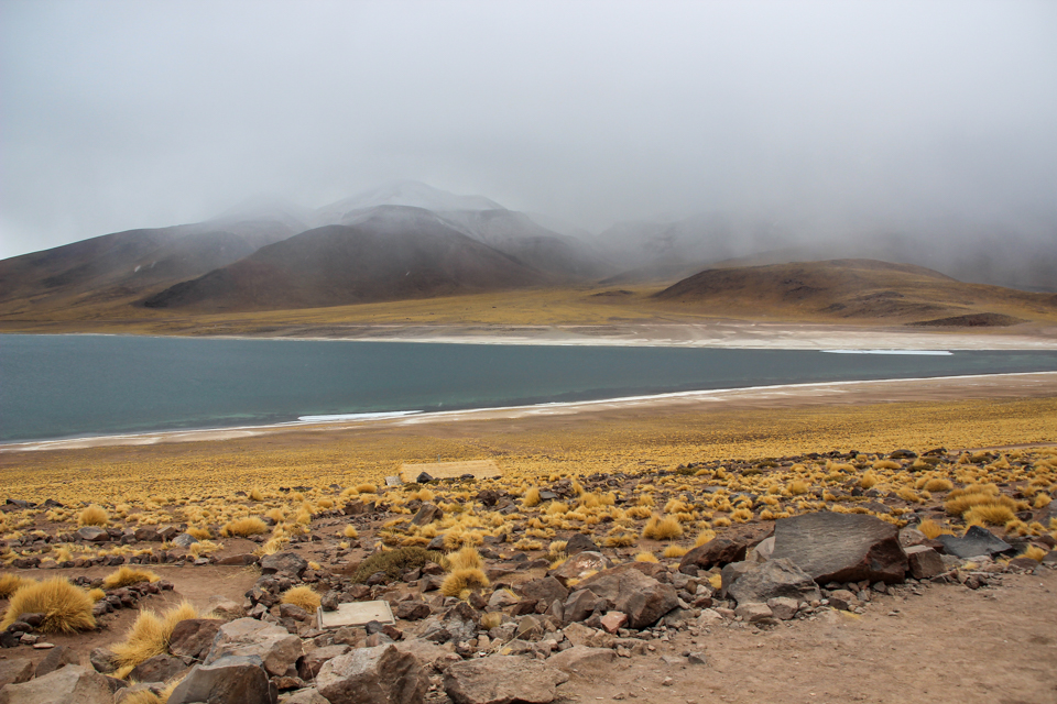 Lagunas altiplanicas - Laguna miscanti no meio com montanhas ao fundo e uma névoa cobrindo grande parte delas. A frente da laguna há uma vegetação rasteira de cor dourada e algumas pedras.