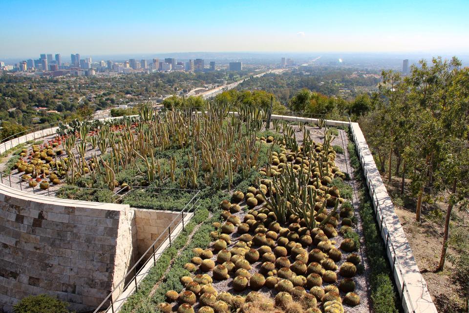 Jardim de cactus com a cidade de Los Angeles ao fundo