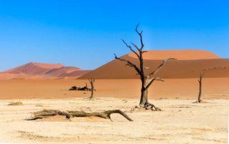 Deserto da Namíbia - Deadvlei com céu azul