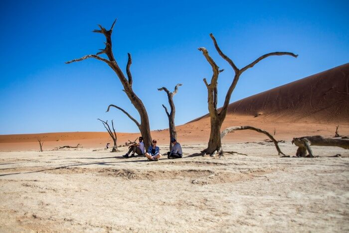 Deserto da Namíbia - nós na sombra das árvores mortas