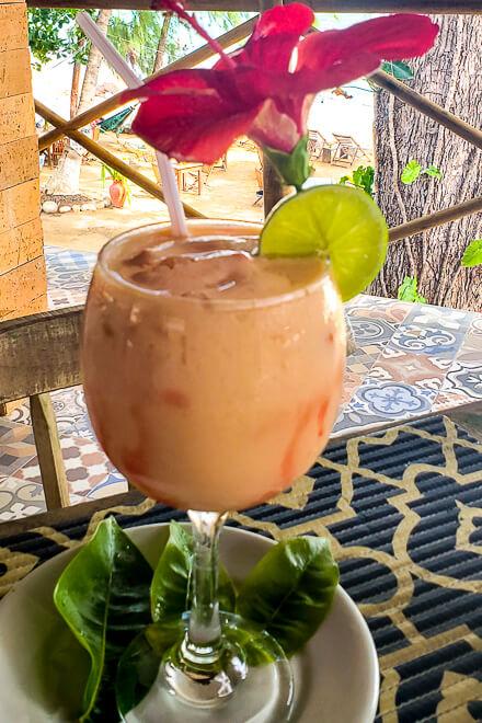 Praias de Alagoas - drink em Japaratinga