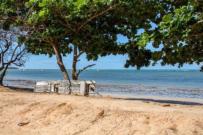 Praias de Alagoas - Porto de Pedras com árvores a beira mar e uma jangada enconstada