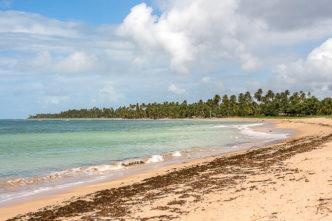 Praias de Alagoas perto de Maragogi. Conheça outros paraísos naturais do estado de Alagoas.