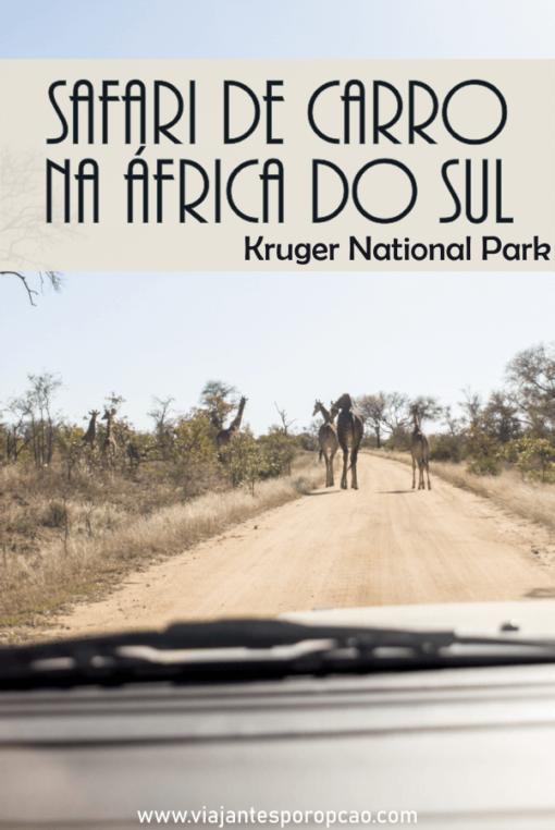 Safári na África do Sul, saiba tudo que você precisa saber para fazer um safári por conta própria (self drive) no Kruger National Park