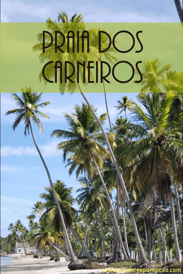 Praia dos carneiros em fotos pra você saber quão maravilhosa é essa praia de Pernambuco