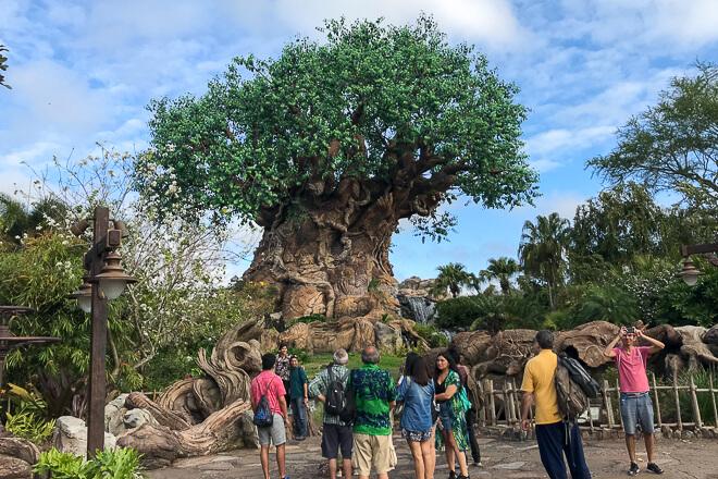 Parques em Orlando - árvore da vida no Animal Kingdom