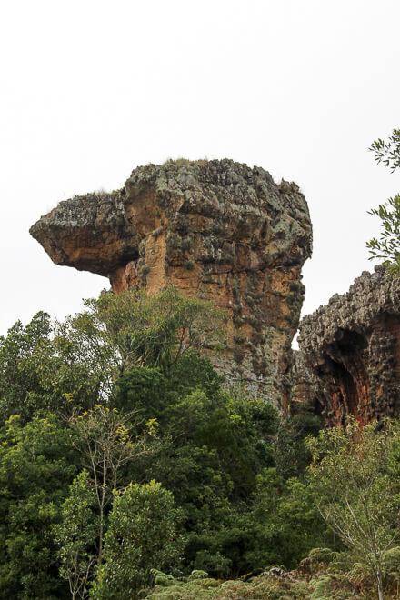 Escultura de Camelo