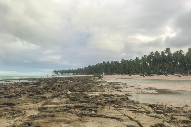 Praia dos Carneiros fotos- a chuva espantou os turistas e ficamos com os corais só pra gente