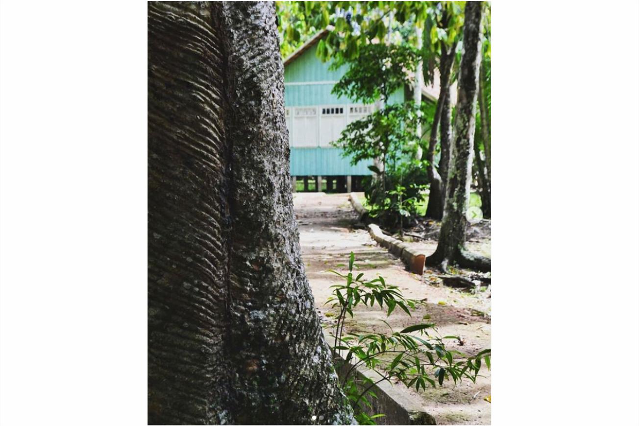 O que fazer em Rio Branco Parque Capitão Ciríaco