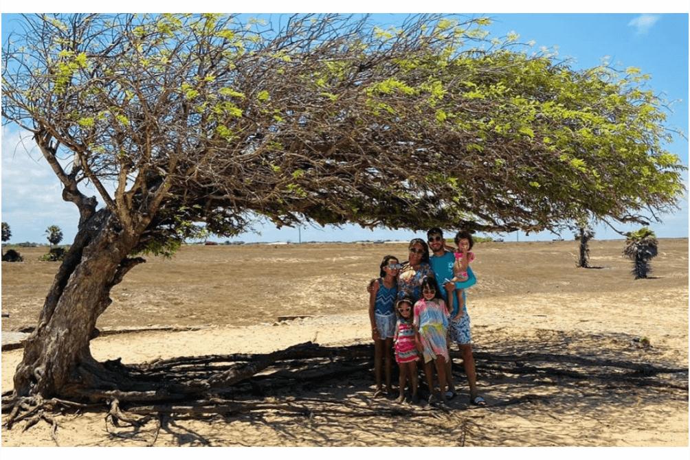 O que fazer no Piauí