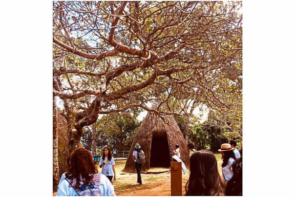 O que fazer em Alagoas - Quilombo dos Palmares